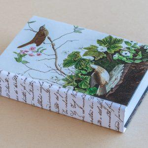 Jotter pad birds brown