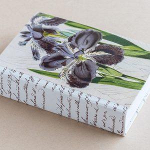Jotter pad botanical irises