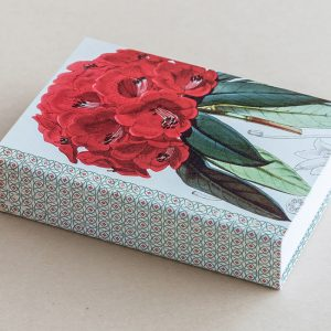 Jotter pad botanical rhododendron red