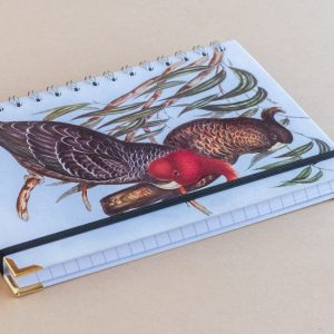 Notebook Lined A5 parrots