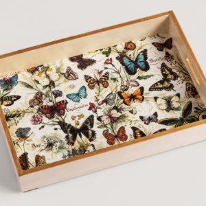 Tray Butterflies Bomo