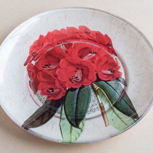 decoupage  glass plate red rhododendron