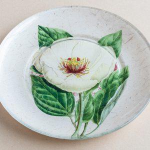 decoupage  glass plate white poppy