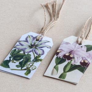 gift tags clematis / orchid purple