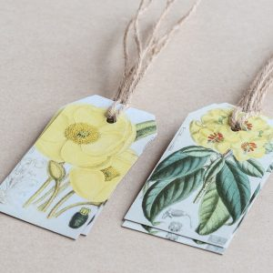 gift tags poppy / primrose yellow