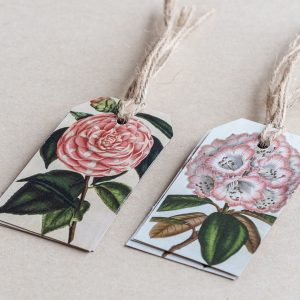 gift tags rhododendron / camellia pink