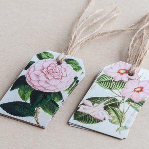 gift tags rose /  diplodenia  pink
