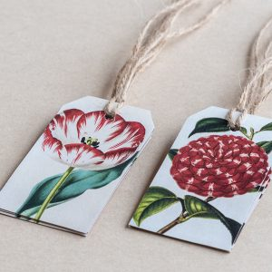 gift tags tulip / camellia red