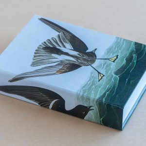 Jotter pad bird behind
