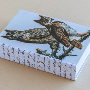 Jotter pad bird owls brown