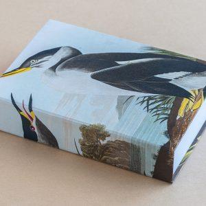Jotter pad bird penguine