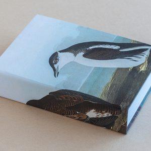Jotter pad bird penguine 2