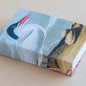 Jotter pad bird seagull