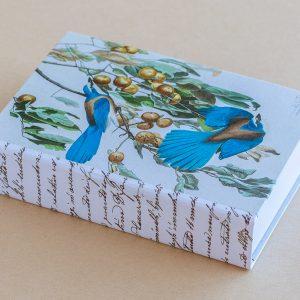 Jotter pad blue birds