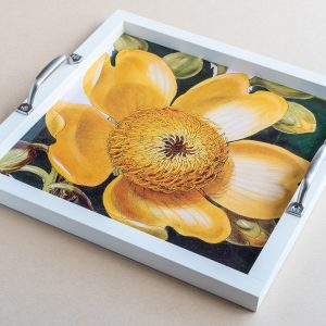 Tea tray  cotton tree flower yellow