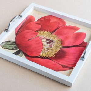 Tea tray poppy red