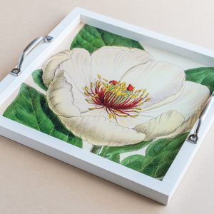 Tea tray poppy white