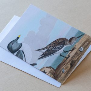 Greeting Card – Bird Beach 01