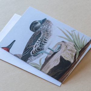 Greeting Card – Bird Duck 02