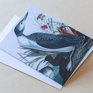 Greeting Card – Bird Duck Tall 03