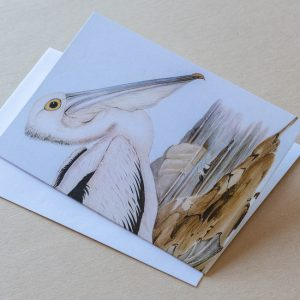 Greeting Card – Bird Pelican 05