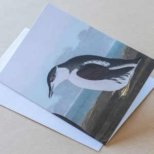 Greeting card – Bird Penguin Small 06