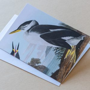 Greeting Card – Bird Penguin Tall 07