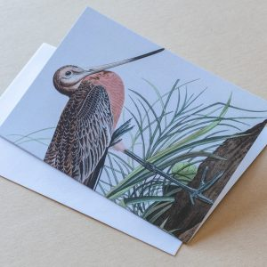 Greeting Card –  Bird Stork 11