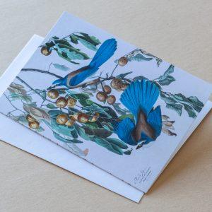 Greeting Card – Birds Blue 13