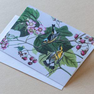Greeting Card – Birds Blue Yellow 14
