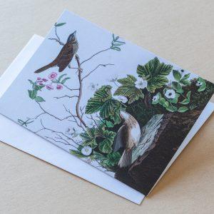 Greeting Card – Birds Brown 15