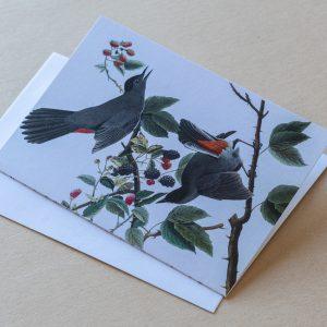 Greeting Card – Birds Grey Red 17