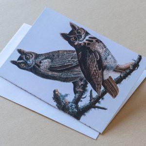 Greeting Card – Birds Owls 18