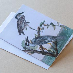 Greeting Card – Birds Storks 21