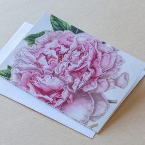Greeting Card – Camellia 01