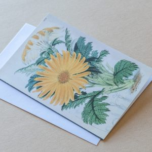 Greeting Card – Daisies Yellow 07