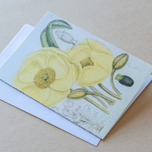 Greeting Card – Poppies Yellow 17