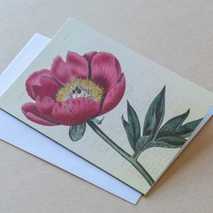 Greeting Card – Poppy Red 19
