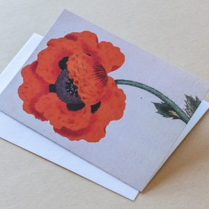 Greeting Card –  Poppy Red 20
