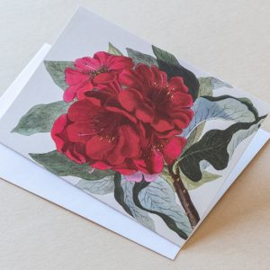 Greeting Card – Rhododendron Red 24