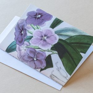 Greeting Card – Yesterday Today and Tomorrow Purple 30