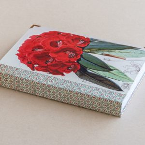 A5 jotter –  rhododendron – red
