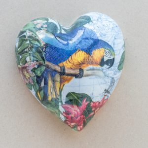 large heart – blue – yellow parrot