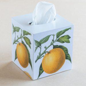 tissue box cover – citrus